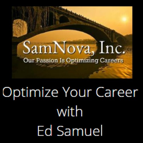 OPTIMIZE YOUR CAREER 8 - 11 - 18 The Importance of Building Formal Networks   Guest: Angel Peluso