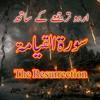 Surah Al-Qiyamah, With Urdu Translation | سورہ قیامہ | سورۃ القیامۃ | محمد سالم انصاری |