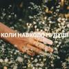 КОЛИ НАВКОЛО НІ ДУШІ (Океан Ельзи cover)