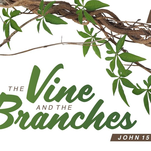 The Vine and the Branches 'Fruitful Living' David Devine