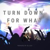 Turn Down For What (Desi Party Mix)