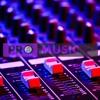Pro Music - Domino