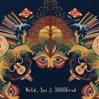 Felix Eul - 3000Grad Festival - Cosmorama 11.8.3018