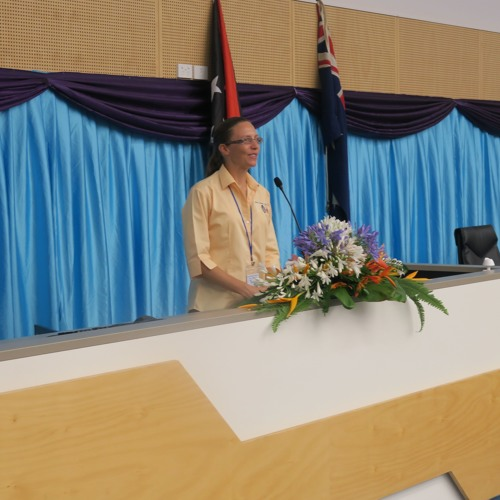2018 PNG Update - Parallel Session 2: Digital technology