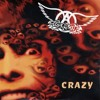 Aerosmith - Crazy (Acapella + Instrumental) FREE