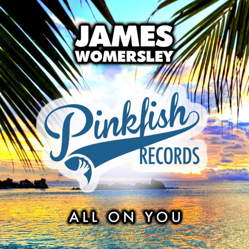 James Womersley - All On You (Original Mix)