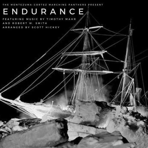 Endurance - Final Cut