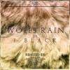J Black - Wolf`s Rain (t-Zhuk remix)