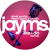 David Guetta, Martin Garrix & Brooks - Like I Do (Jayms Remix)[FREE DOWNLOAD]