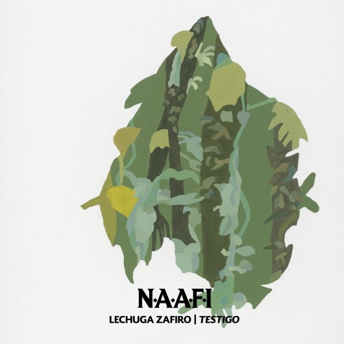 Lechuga Zafiro - Testigo