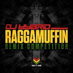 DJ HYBRID - RAGGAMUFFIN (ARTTU REMIX)