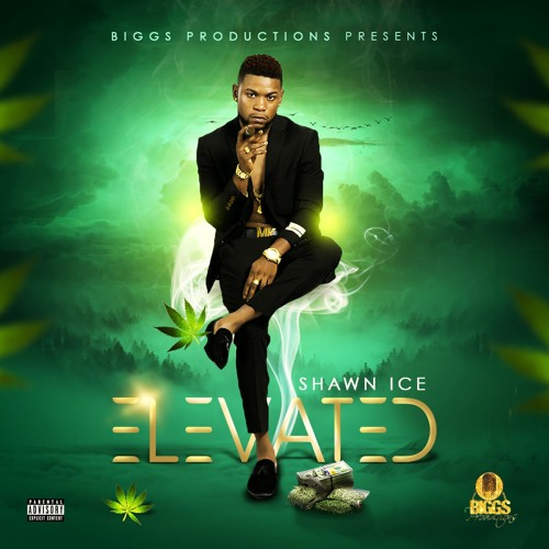 Shawn Ice - Elevated (Biggs Productions)
