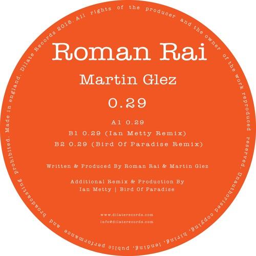 Roman Rai, Martin Glez - 0.29 (Bird Of Paradise Remix)