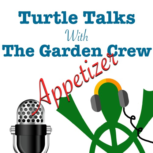 Turtle Talks Summer Appetizer 4 - Ep 11