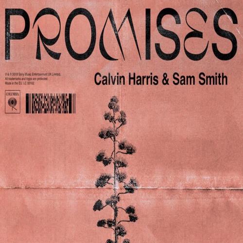 PROMISES - Calvin Harris & Sam Smith | Cover