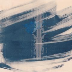 blue twenty-eight: Todd Barton - Multum in Parvo