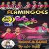 09 - HINDI SONGS (FLEMINGOS)