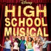 What I've Been Looking For - High School Musical (Full Cover)