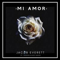 Mi Amor ft. Origin & Alex Suave (HD)