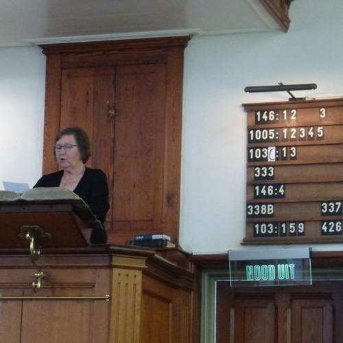 Dienst 1909 - 2018 In Nieuwland. Elizabeth De Haan-Roelse
