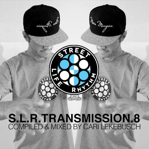 SLR Transmission 8 by Cari Lekebusch