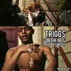 TRIGGS - On The Net ft. Berk (Prod. by @1smackz)
