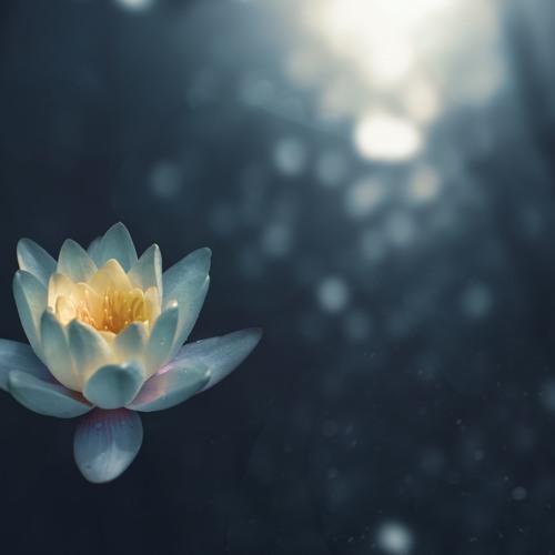 Gratitude Practice by Jane Compson