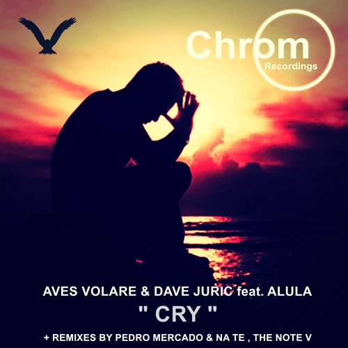 [CHROM017] Aves Volare & Dave Juric feat. Alula - Cry (Original Mix) SNIPPET