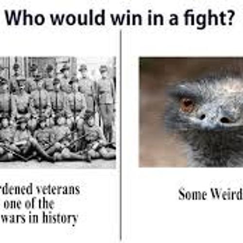 Episode 13 - The Great Emu War