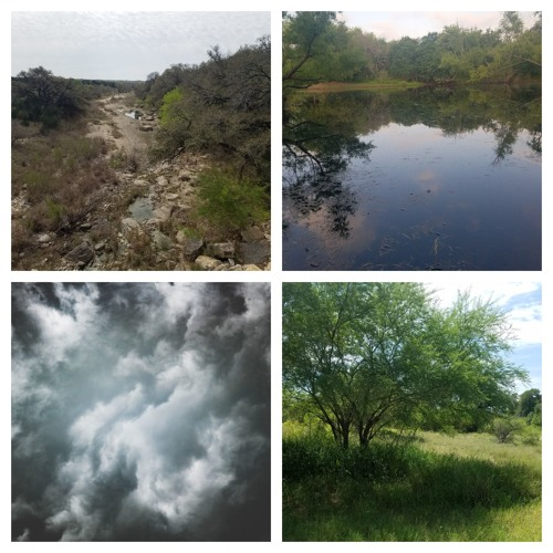 Four Scenes from the Bike Trail