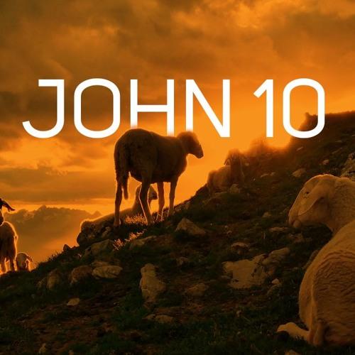 John 10