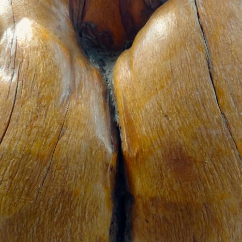 hot ass close up