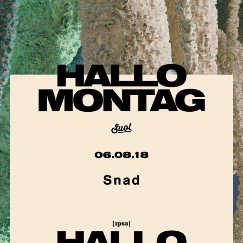 Snad @ Hallo Montag Open Air #15 (06.08.2018)