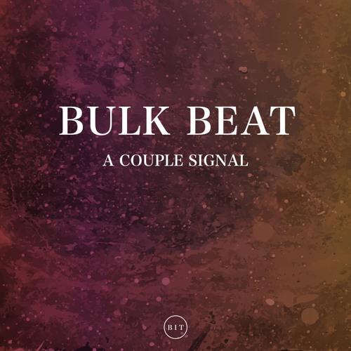 Bulk Beat - A Couple Signal (Original Mix)
