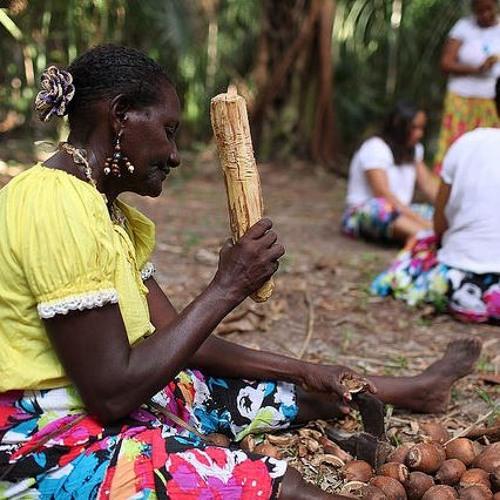 Bancada ruralista arma mais uma ofensiva contra povos tradicionais