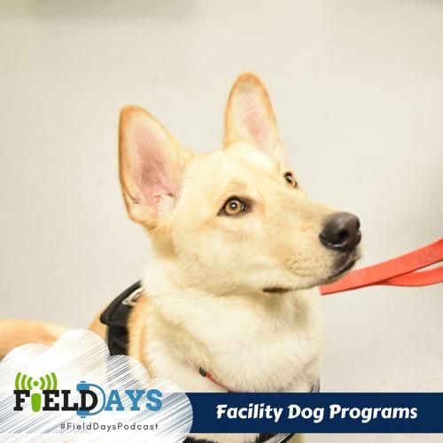 Field Days Podcast - Dog Programs
