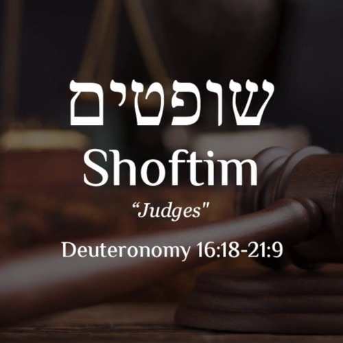 Shoftim Study Part 13.MP3