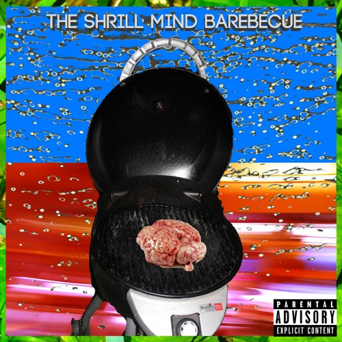 The Shrill Mind Barbecue