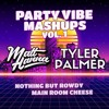 Matt Hanna & Tyler Palmer - Party Vibe Mashups Vol. 1