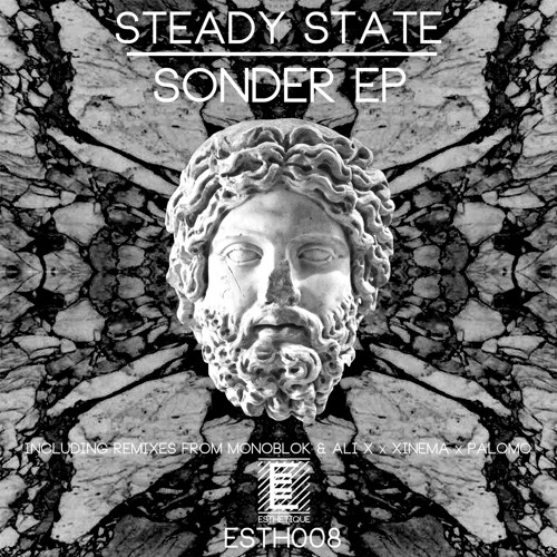 PREMIERE - Steady State - The Blackout (Monoblok Remix) (Esthetique)