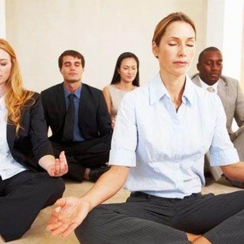 Meditation Project - Audio Meditation Excerpt (20 mins) 28:08:2017