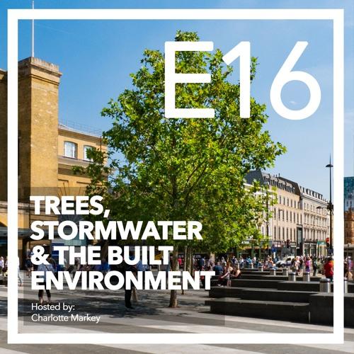 Sharon Hosegood Discusses the Future of Arboriculture