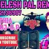 Shishe Ka Tha Dil Mera DJ NEELESH PAL REMIX
