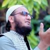 Yahi Hasrat Hai Dil E Muztar Main, Hafiz Salahuddin Almaroofi