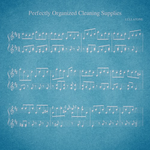 perfectly organized cleaning supplies (piano version)