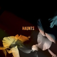 Bearcubs - Haunts