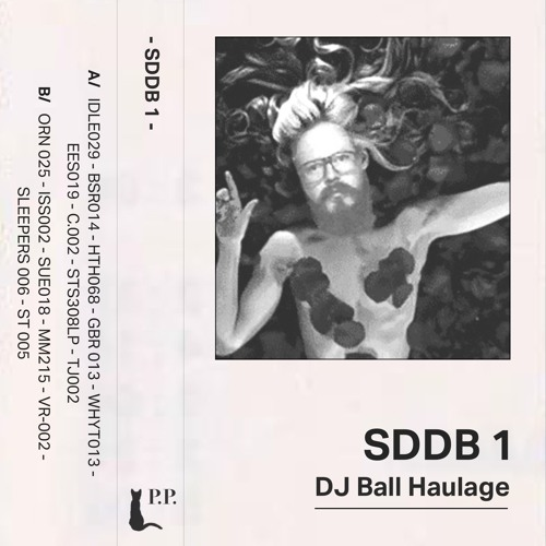 DJ Ball Haulage presents Spacedubdanceonthebeach Vol. 1