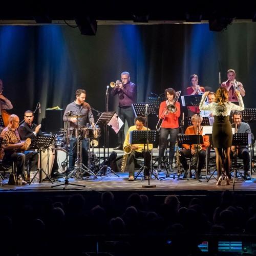 Big Band du CNRS de Marseille (live acoustique, 3 juillet 2018)