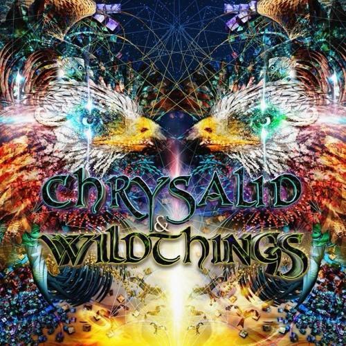 Chrysalid & Wildthings 2018 - Headworks Live Rec 2018