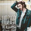 HOZIER- TAKE ME TO CHURCH